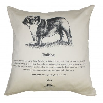 Bulldog-Cushion