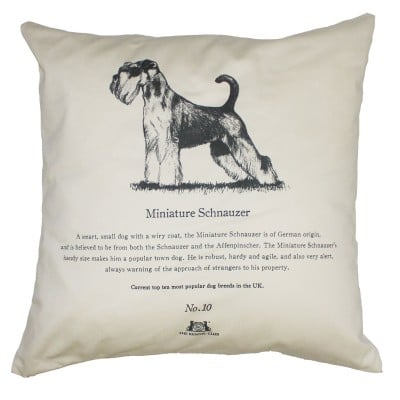 Miniature-Schnauzer-Cushion