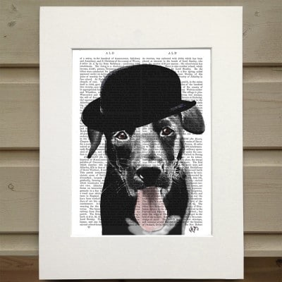 Fab Funky black Labrador in a bowler hat antiquarian book print