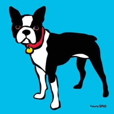 Marc Tetro Boston Terrier on Blue Print