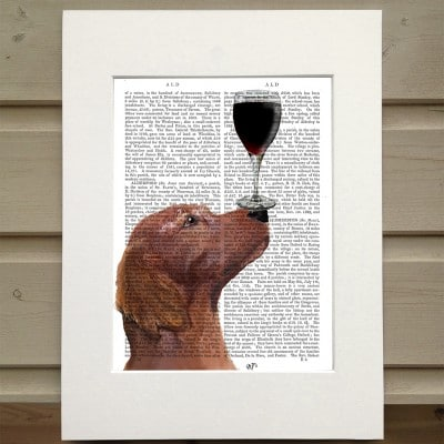 Fab Funky Red Setter and wine antiquarian book print