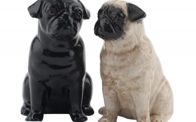 What's in a Pug?