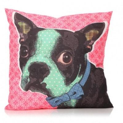 Large cute Boston Terrier cushion 60cm x 60cm