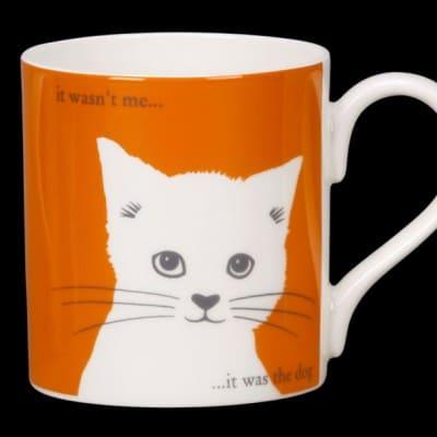 Puss-orange