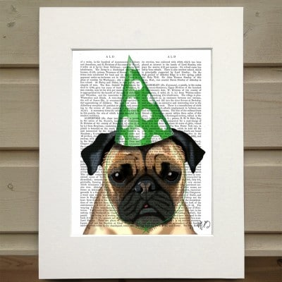 Fab Funky Pug in a party hat antiquarian book print