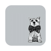 Gillian Kyle set of 4 coasters West Highland White Terrier
