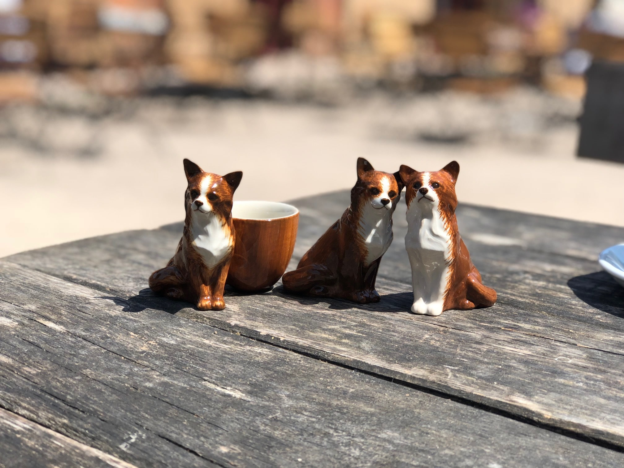 dog-homewares-chihuahua-salt-and-pepper-egg-cup